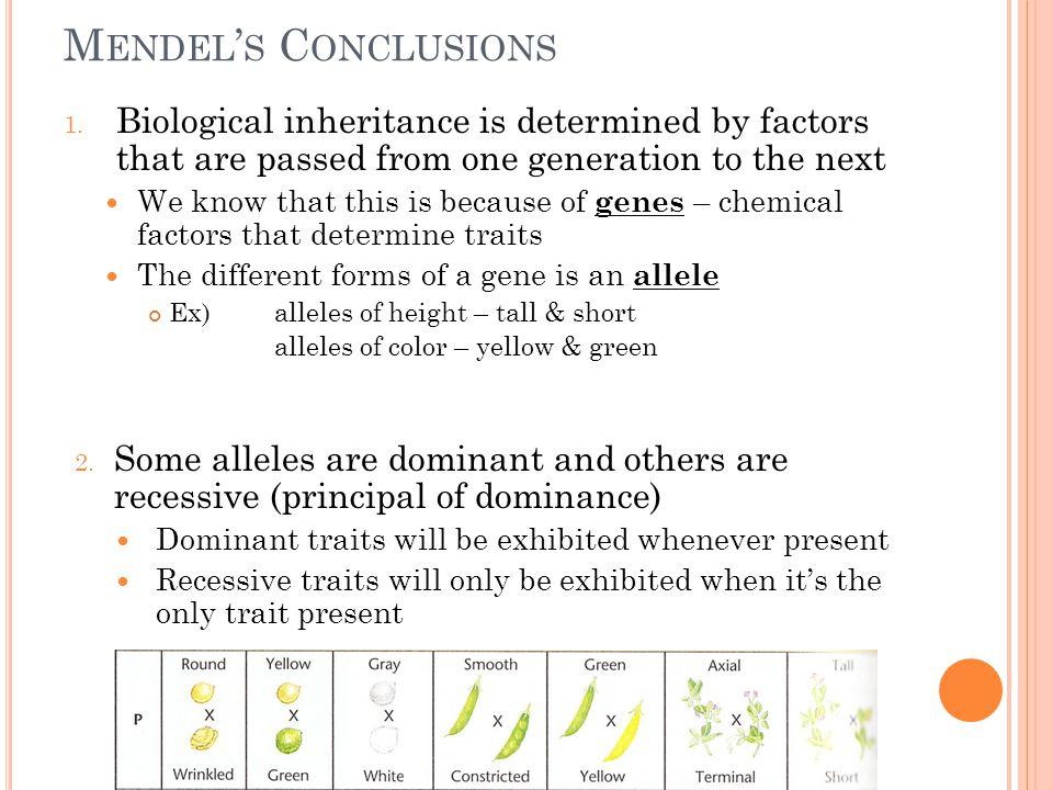 M ENDEL ' S C ONCLUSIONS 1.