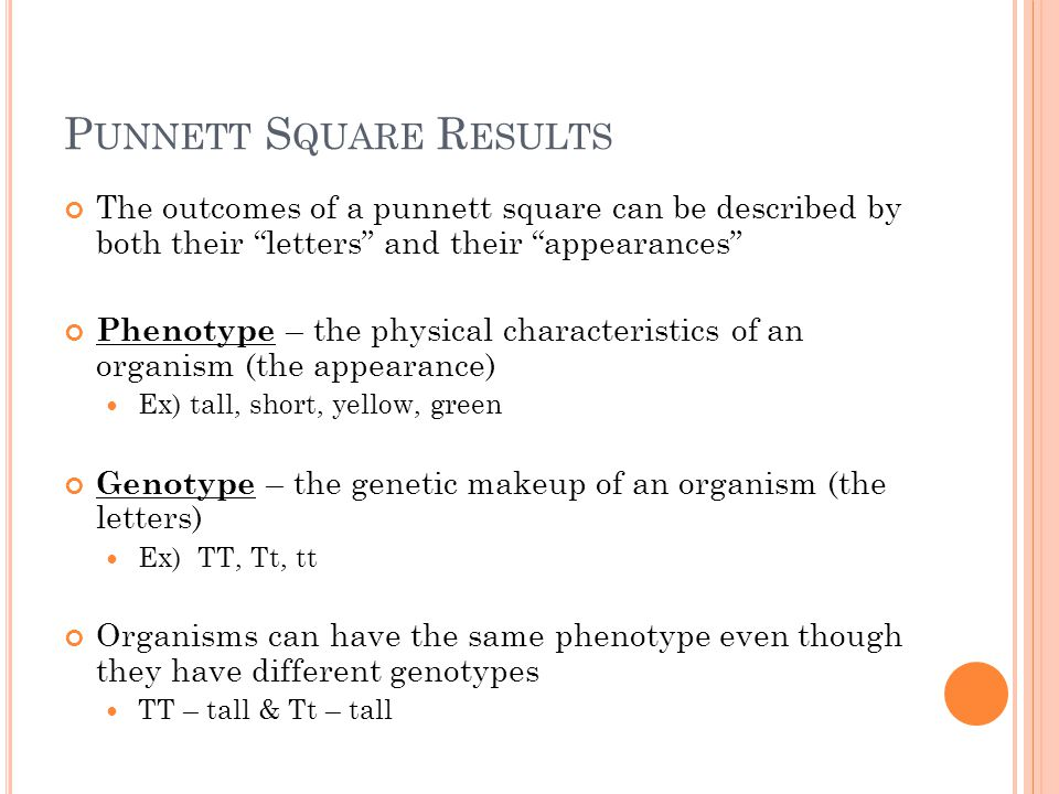 P UNNETT S QUARE R ESULTS The outcomes of a punnett square can be described by both their letters and their appearances Phenotype – the physical characteristics of an organism (the appearance) Ex) tall, short, yellow, green Genotype – the genetic makeup of an organism (the letters) Ex) TT, Tt, tt Organisms can have the same phenotype even though they have different genotypes TT – tall & Tt – tall