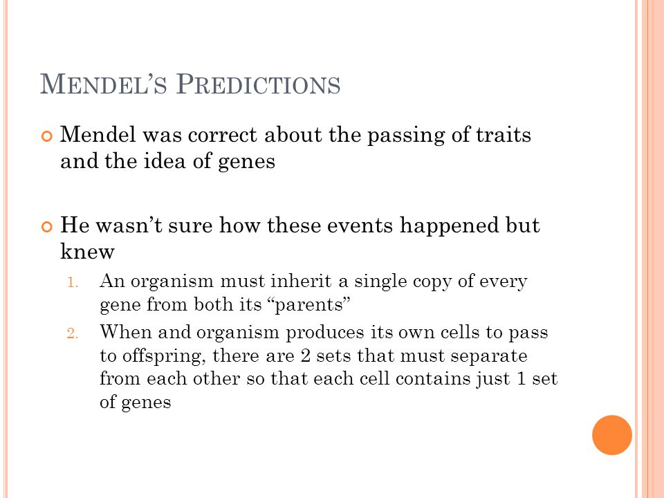 M ENDEL ' S P REDICTIONS Mendel was correct about the passing of traits and the idea of genes He wasn't sure how these events happened but knew 1.