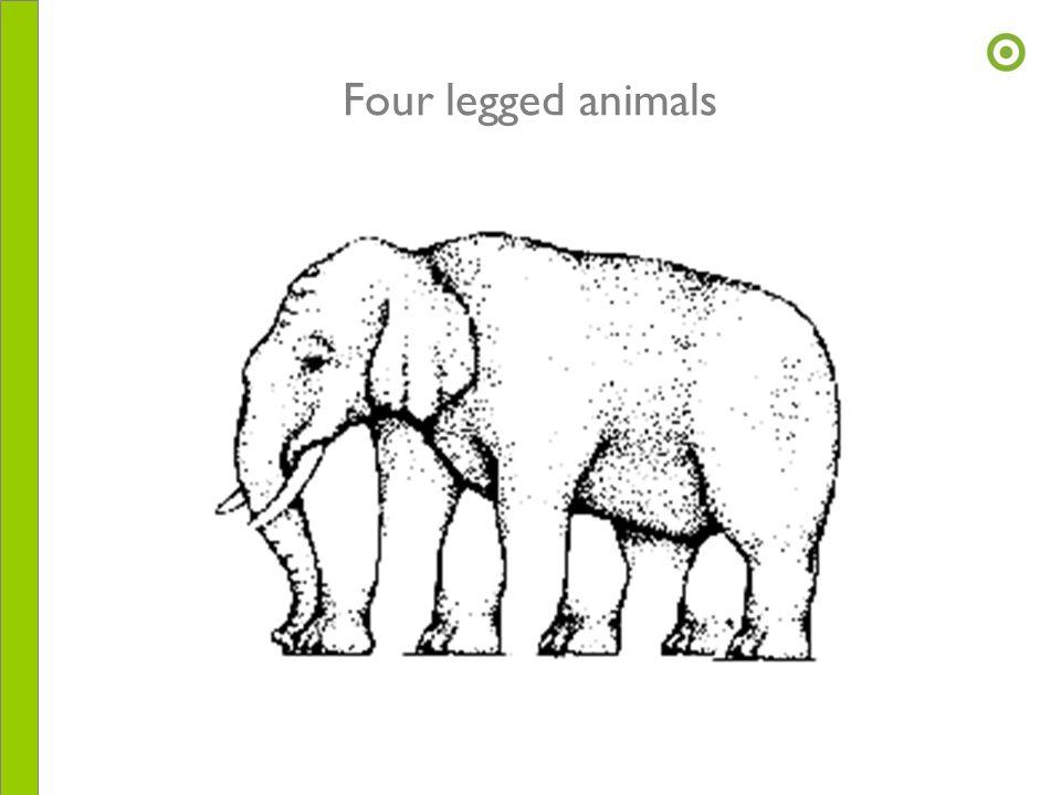 Four legged animals
