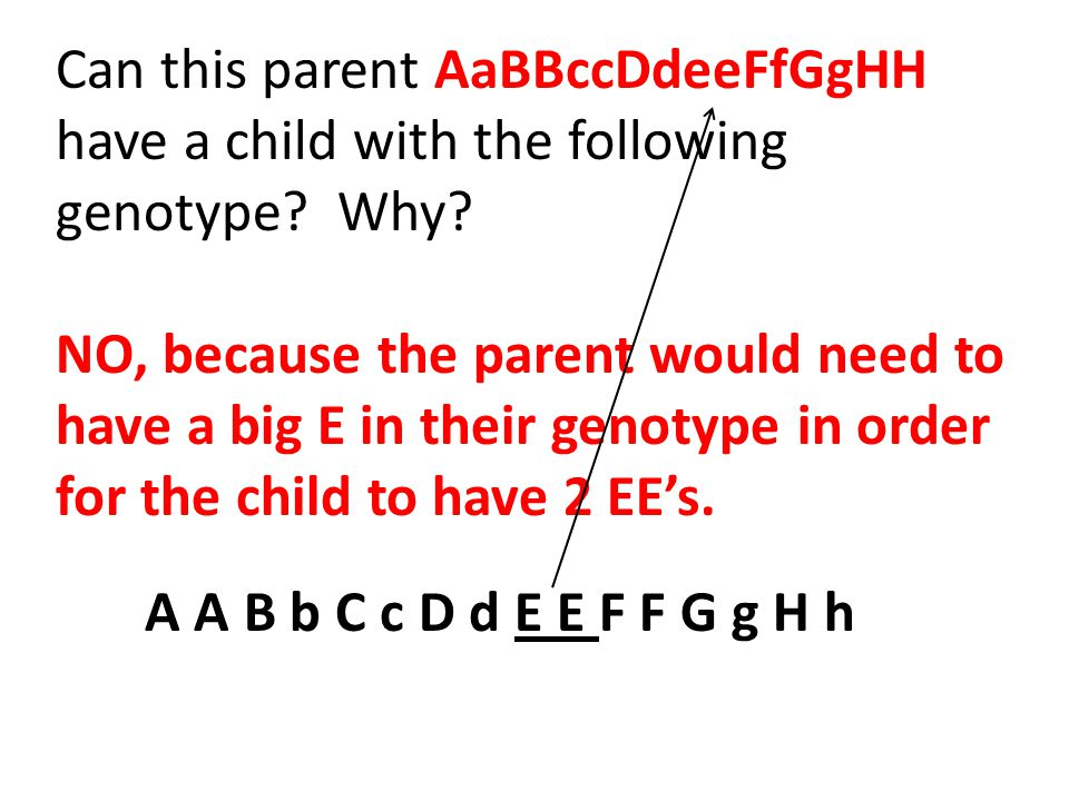 Can this parent AaBBccDdeeFfGgHH have a child with the following genotype? Why? NO, because the parent would need to have a big E in their genotype in