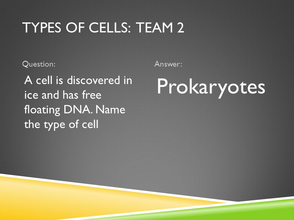 TYPES OF CELLS: TEAM 2 Question:Answer: A cell is discovered in ice and has free floating DNA. Name the type of cell Prokaryotes