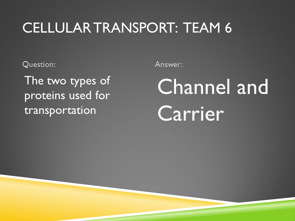 CELLULAR TRANSPORT: TEAM 6 Question:Answer: The two types of proteins used for transportation Channel and Carrier