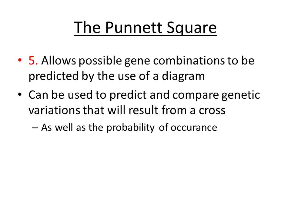 The Punnett Square 5.
