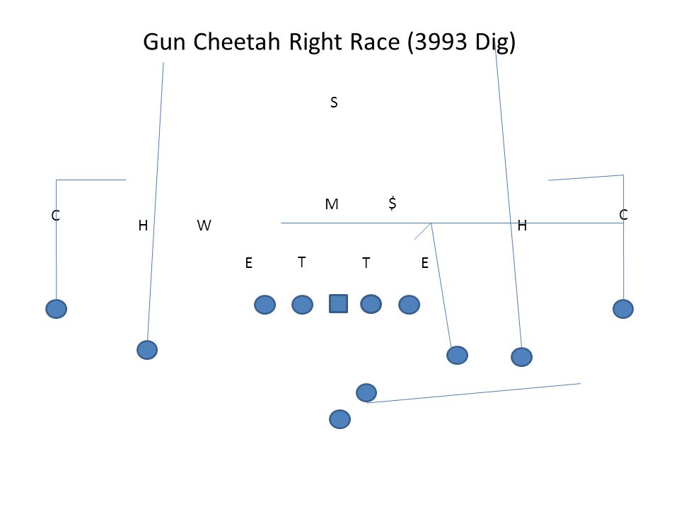 Gun Cheetah Right Race (3993 Dig) T TEE M W S H C H C $