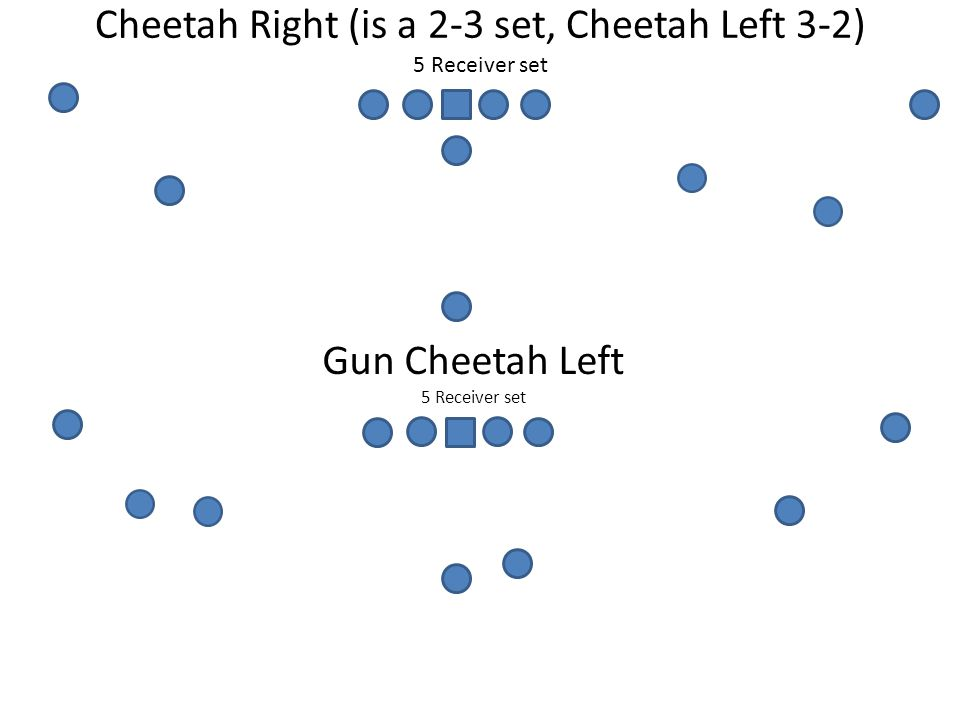 Cheetah Right (is a 2-3 set, Cheetah Left 3-2) 5 Receiver set Gun Cheetah Left 5 Receiver set