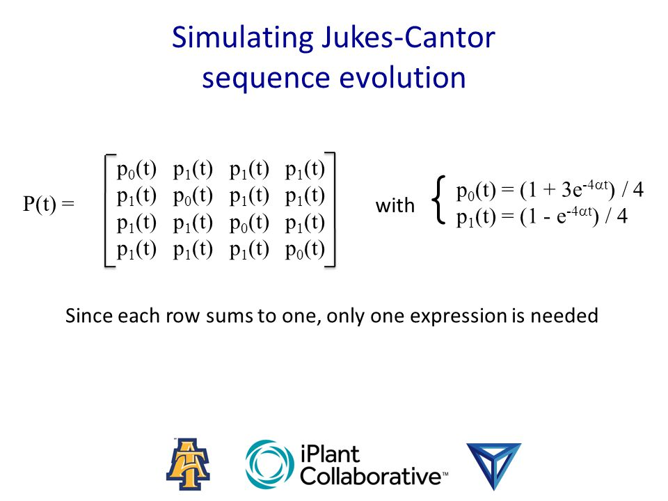 Simulating Jukes-Cantor sequence evolution P(t) = p 0 (t) p 1 (t) p 1 (t) p 1 (t) p 1 (t) p 0 (t) p 1 (t) p 1 (t) p 1 (t) p 1 (t) p 0 (t) p 1 (t) p 1 (t) p 1 (t) p 1 (t) p 0 (t) { p 0 (t) = (1 + 3e -4  t ) / 4 p 1 (t) = (1 - e -4  t ) / 4 with Since each row sums to one, only one expression is needed