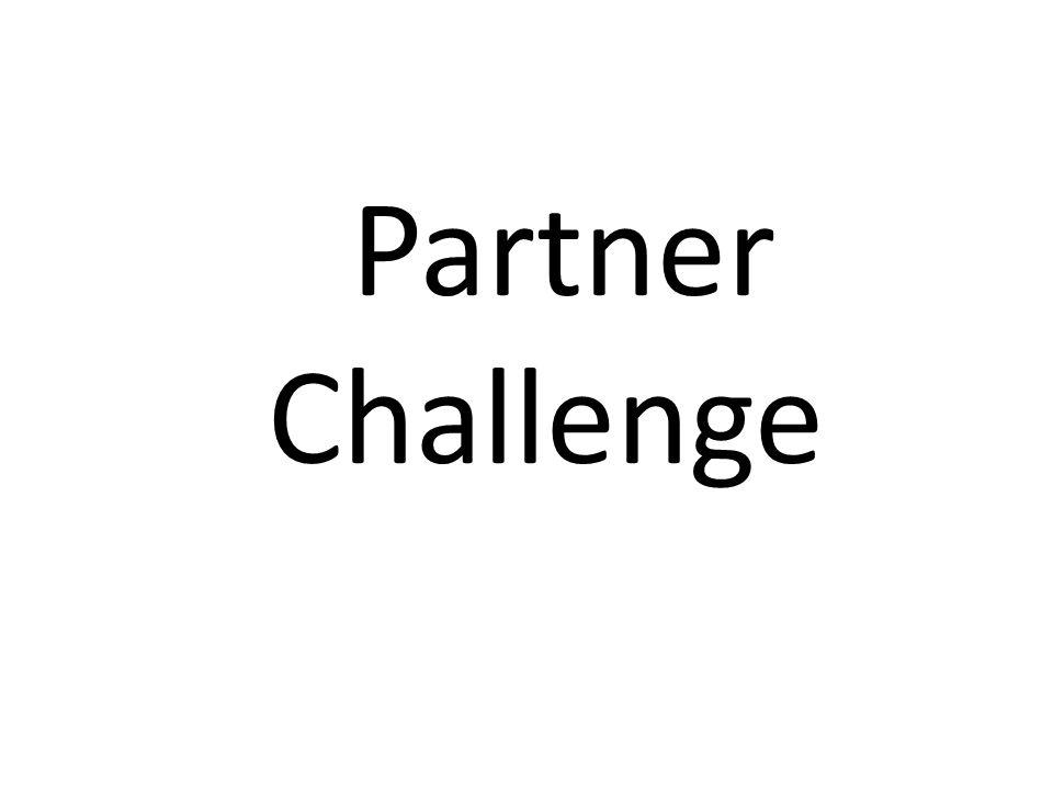 Partner Challenge