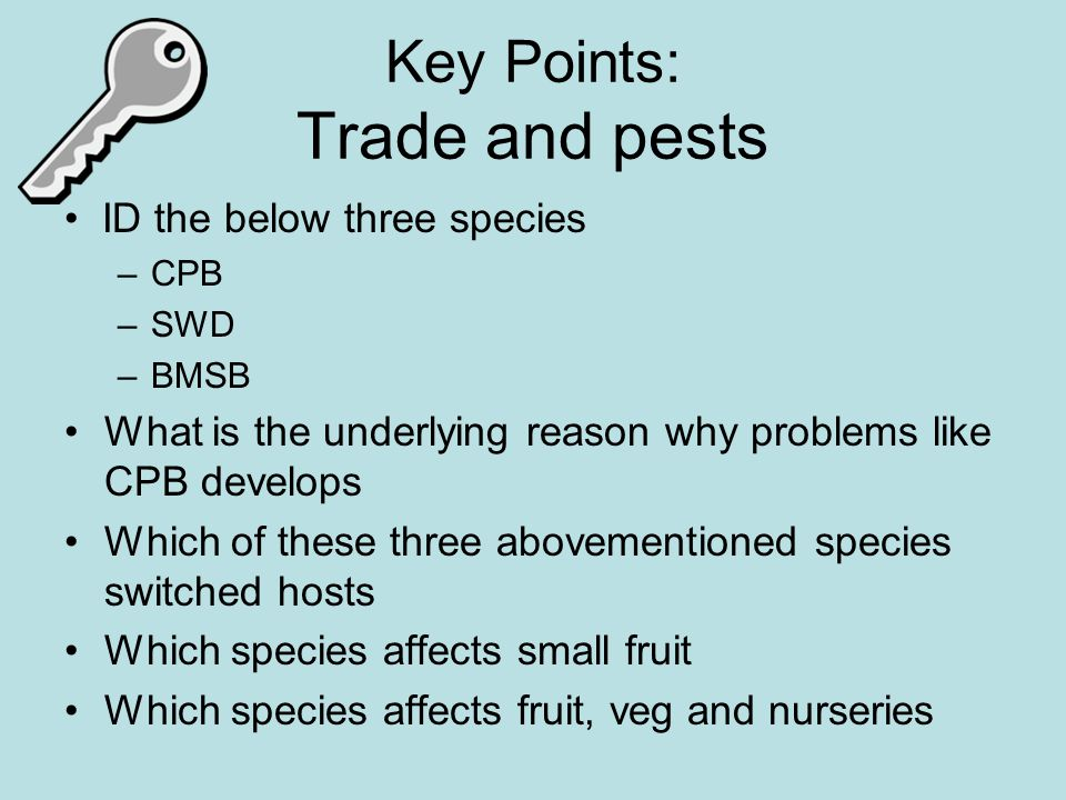 Key Points: Trade and pests ID the below three species –CPB –SWD –BMSB What is the underlying reason why problems like CPB develops Which of these three abovementioned species switched hosts Which species affects small fruit Which species affects fruit, veg and nurseries
