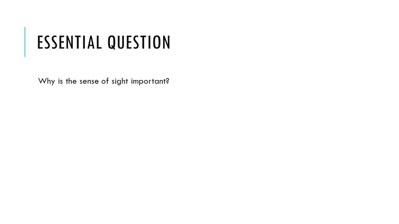 ESSENTIAL QUESTION Why is the sense of sight important
