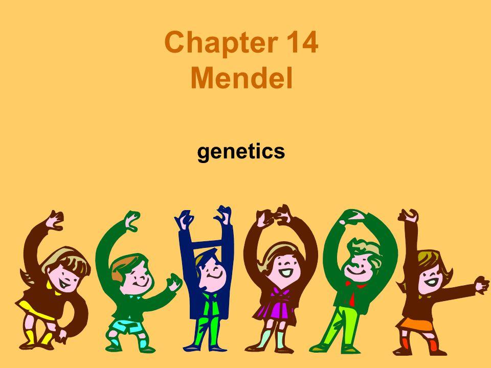 Chapter 14 Mendel genetics