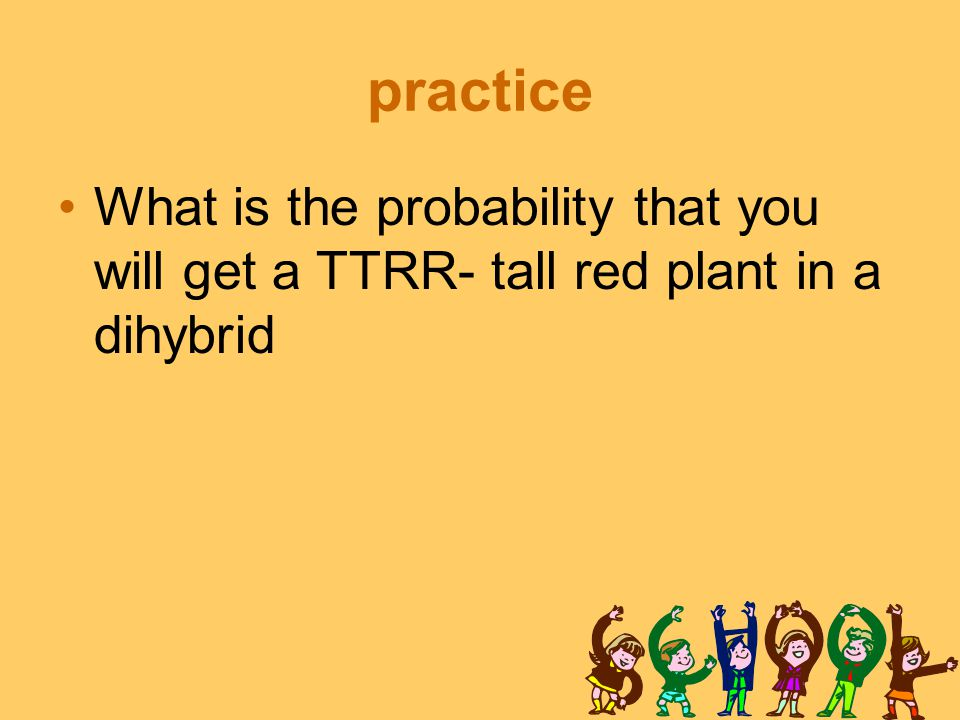 practice What is the probability that you will get a TTRR- tall red plant in a dihybrid