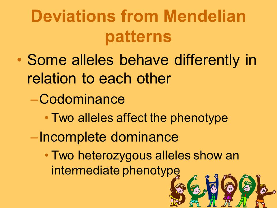 Deviations from Mendelian patterns Some alleles behave differently in relation to each other –Codominance Two alleles affect the phenotype –Incomplete dominance Two heterozygous alleles show an intermediate phenotype