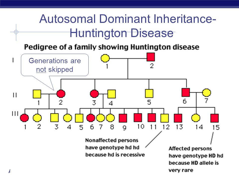 AP Biology Generation skipped Autosomal Recessive Inheritance- cystic fibrosis
