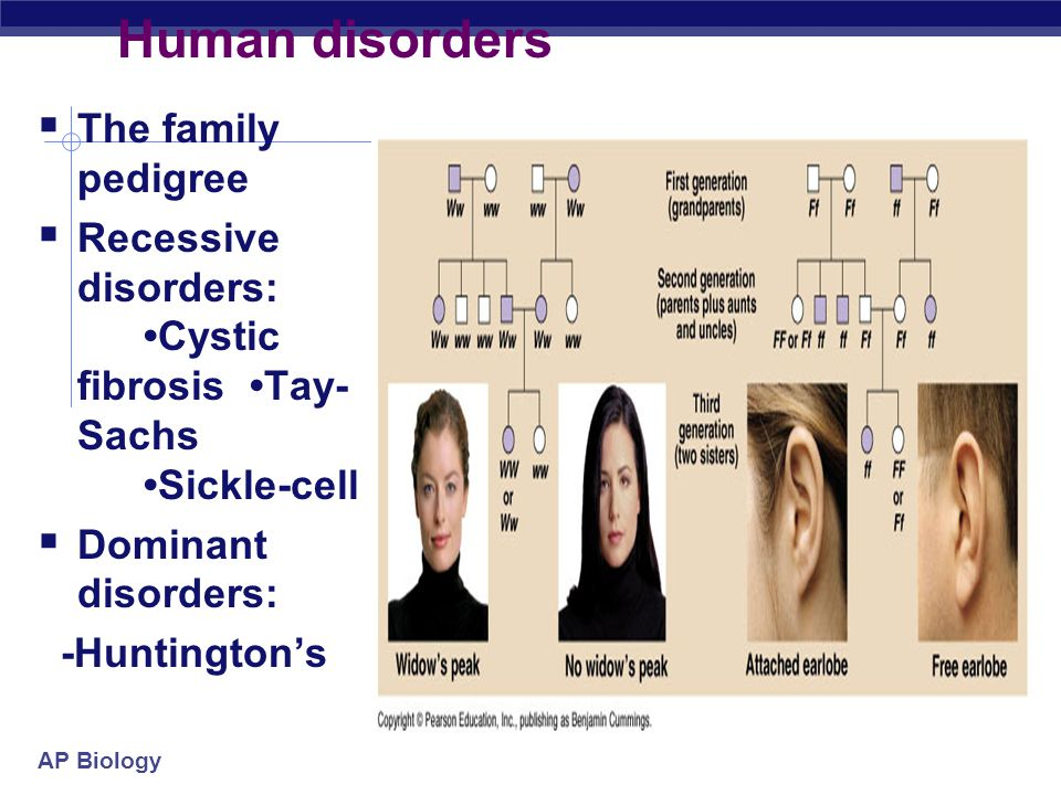 AP Biology Generations are not skipped Autosomal Dominant Inheritance- Huntington Disease