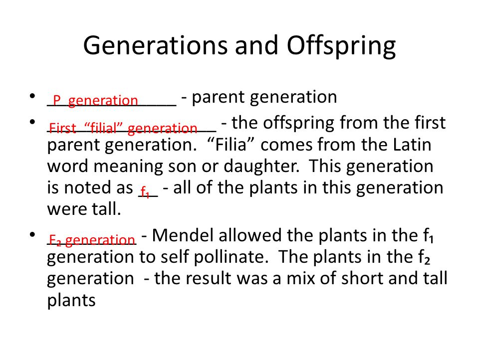 "Generations and Offspring _____________ - parent generation _________________ - the offspring from the first parent generation. ""Filia"" comes from the"