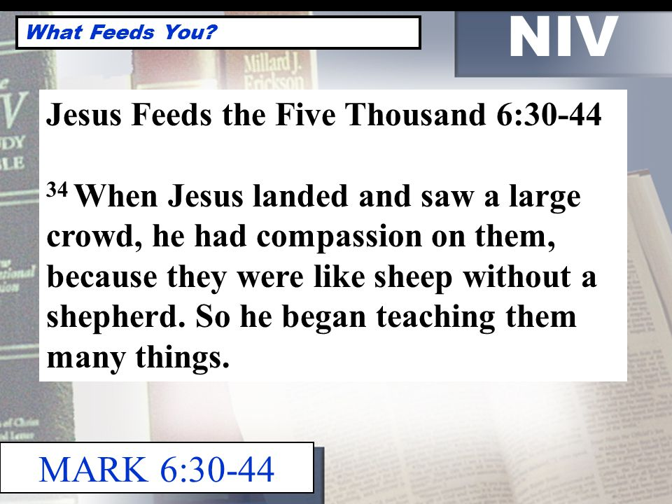 NIV What Feeds You.