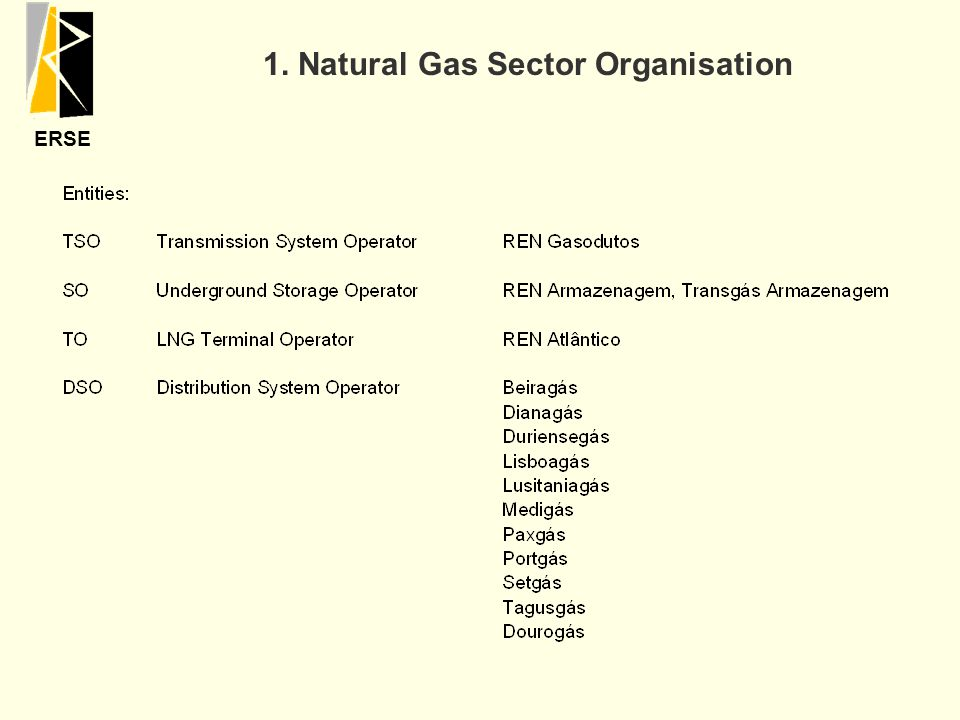 ERSE 1. Natural Gas Sector Organisation