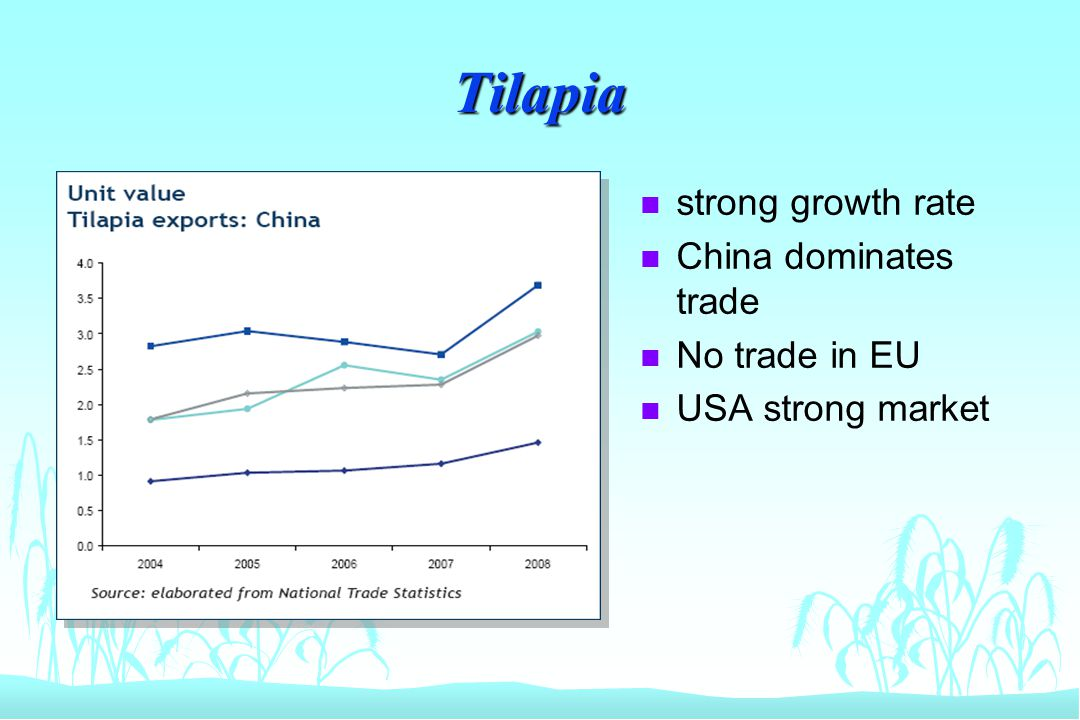 Tilapia n strong growth rate n China dominates trade n No trade in EU n USA strong market