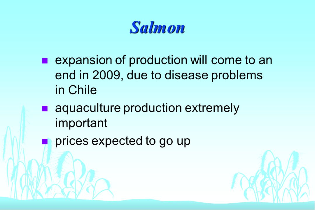 Salmon n expansion of production will come to an end in 2009, due to disease problems in Chile n aquaculture production extremely important n prices e