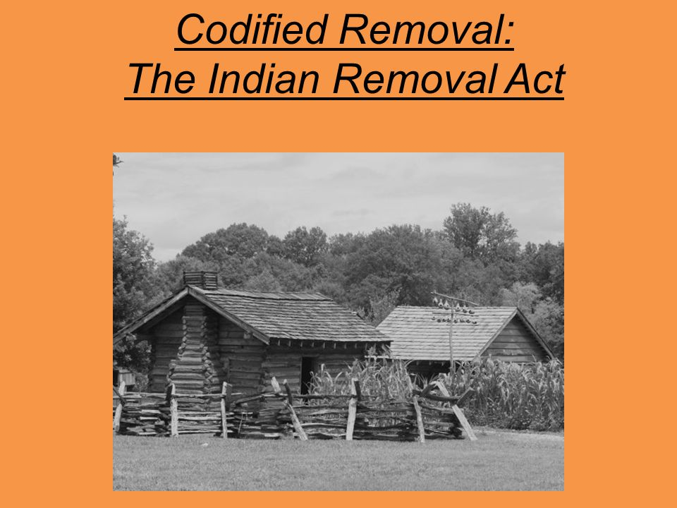 Codified Removal: The Indian Removal Act