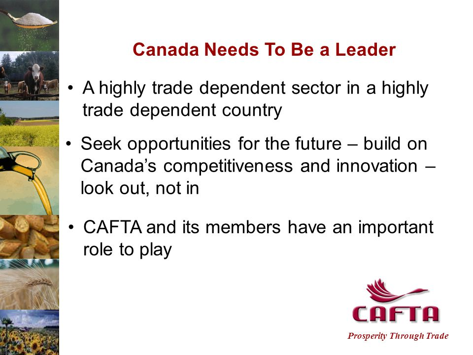 Prosperity Through Trade Canada Needs To Be a Leader A highly trade dependent sector in a highly trade dependent country Seek opportunities for the future – build on Canada's competitiveness and innovation – look out, not in CAFTA and its members have an important role to play
