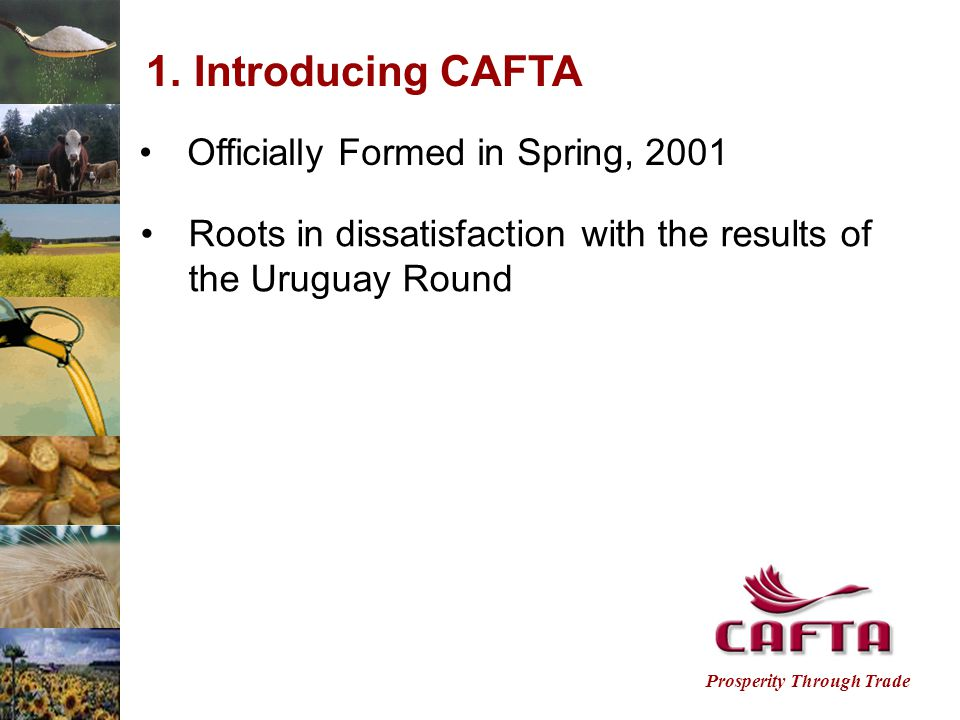 Prosperity Through Trade 1.Introducing CAFTA Officially Formed in Spring, 2001 Roots in dissatisfaction with the results of the Uruguay Round