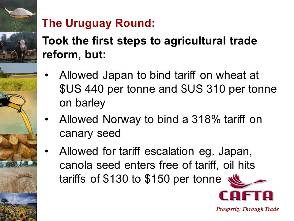 Prosperity Through Trade The Uruguay Round: Took the first steps to agricultural trade reform, but: Allowed Japan to bind tariff on wheat at $US 440 per tonne and $US 310 per tonne on barley Allowed for tariff escalation eg.