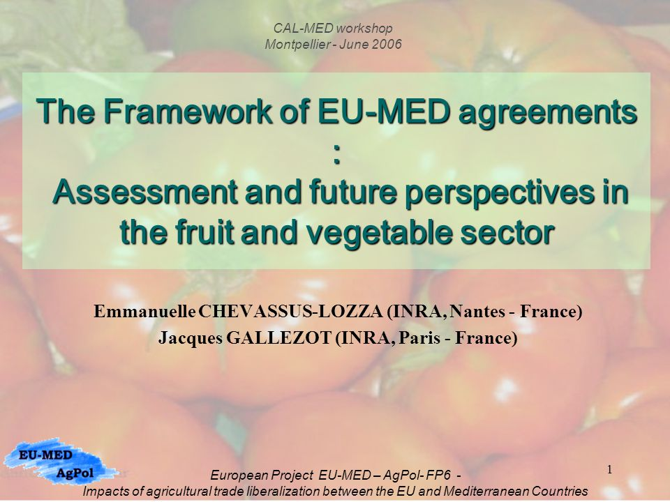1 The Framework of EU-MED agreements : Assessment and future perspectives in the fruit and vegetable sector Emmanuelle CHEVASSUS-LOZZA (INRA, Nantes - France) Jacques GALLEZOT (INRA, Paris - France) CAL-MED workshop Montpellier - June 2006 European Project EU-MED – AgPol- FP6 - Impacts of agricultural trade liberalization between the EU and Mediterranean Countries