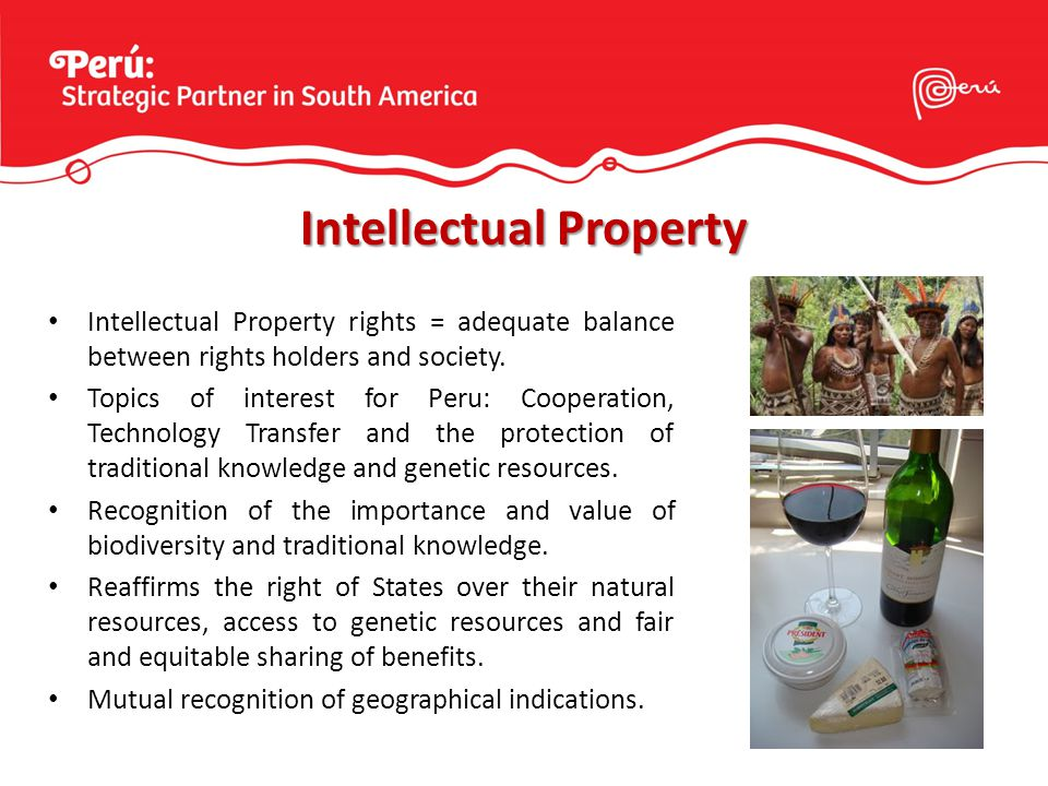 Intellectual Property rights = adequate balance between rights holders and society.