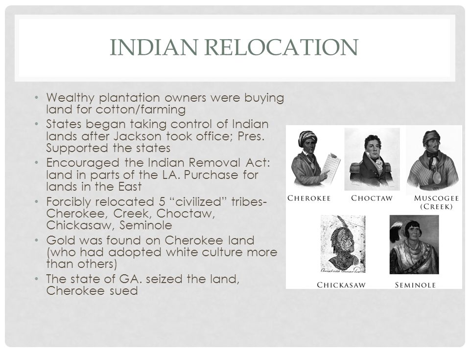 INDIAN RELOCATION Wealthy plantation owners were buying land for cotton/farming States began taking control of Indian lands after Jackson took office;