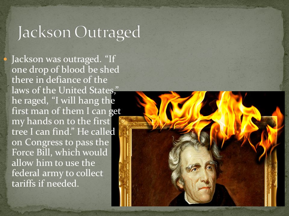 "Jackson was outraged. ""If one drop of blood be shed there in defiance of the laws of the United States,"" he raged, ""I will hang the first man of them"