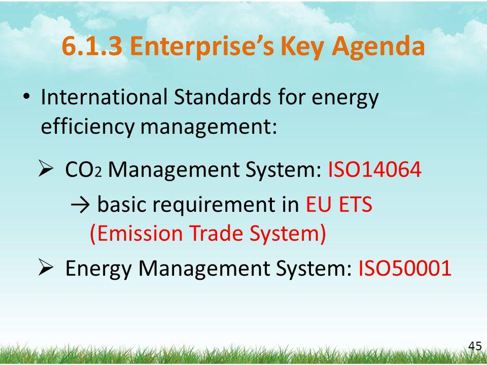 6.1.3 Enterprise's Key Agenda International Standards for energy efficiency management:  CO 2 Management System: ISO14064 → basic requirement in EU E
