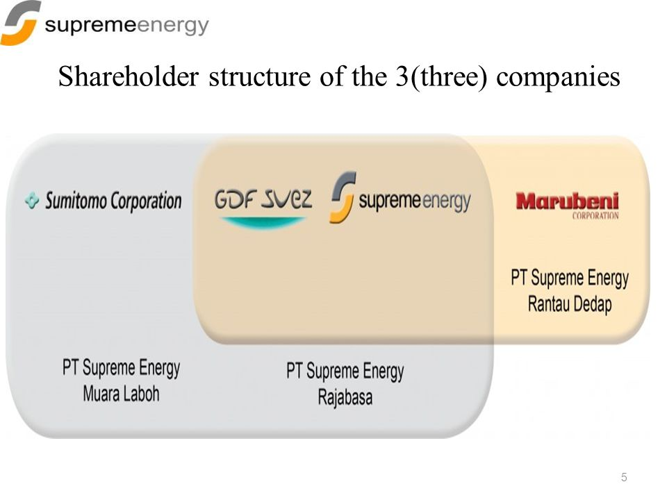 Shareholder structure of the 3(three) companies 5