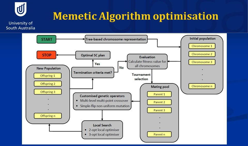 Memetic Algorithm optimisation