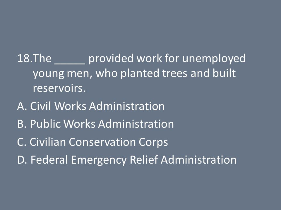 18.The _____ provided work for unemployed young men, who planted trees and built reservoirs.