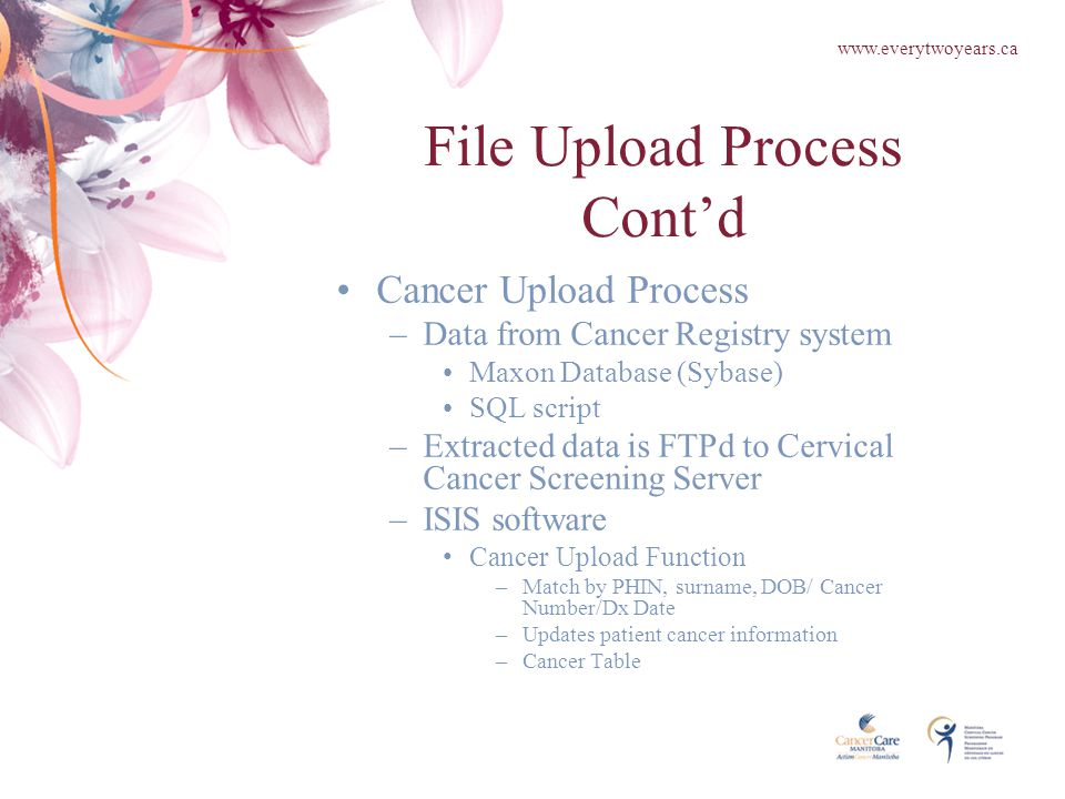 File Upload Process Cont'd Cancer Upload Process –Data from Cancer Registry system Maxon Database (Sybase) SQL script –Extracted data is FTPd to Cervical Cancer Screening Server –ISIS software Cancer Upload Function –Match by PHIN, surname, DOB/ Cancer Number/Dx Date –Updates patient cancer information –Cancer Table www.everytwoyears.ca