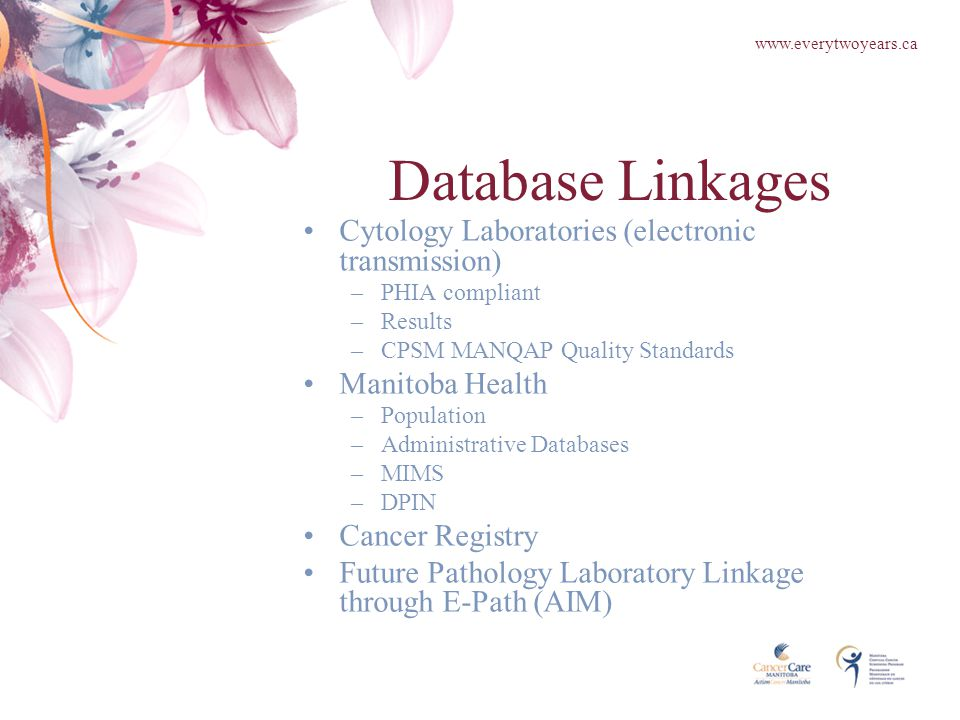 Database Linkages Cytology Laboratories (electronic transmission) –PHIA compliant –Results –CPSM MANQAP Quality Standards Manitoba Health –Population –Administrative Databases –MIMS –DPIN Cancer Registry Future Pathology Laboratory Linkage through E-Path (AIM) www.everytwoyears.ca