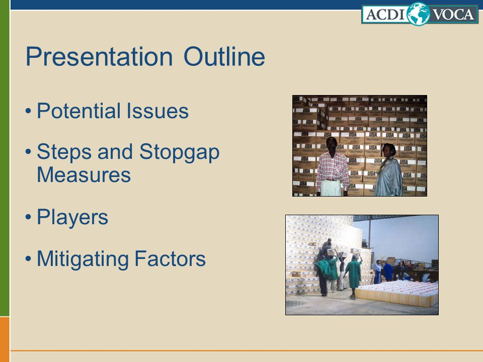 Presentation Outline Potential Issues Steps and Stopgap Measures Players Mitigating Factors