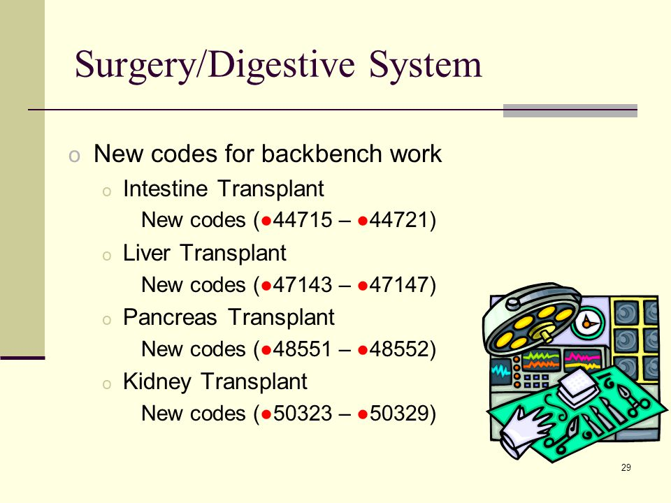 29 Surgery/Digestive System o New codes for backbench work o Intestine Transplant New codes (●44715 – ●44721) o Liver Transplant New codes (●47143 – ●47147) o Pancreas Transplant New codes (●48551 – ●48552) o Kidney Transplant New codes (●50323 – ●50329)