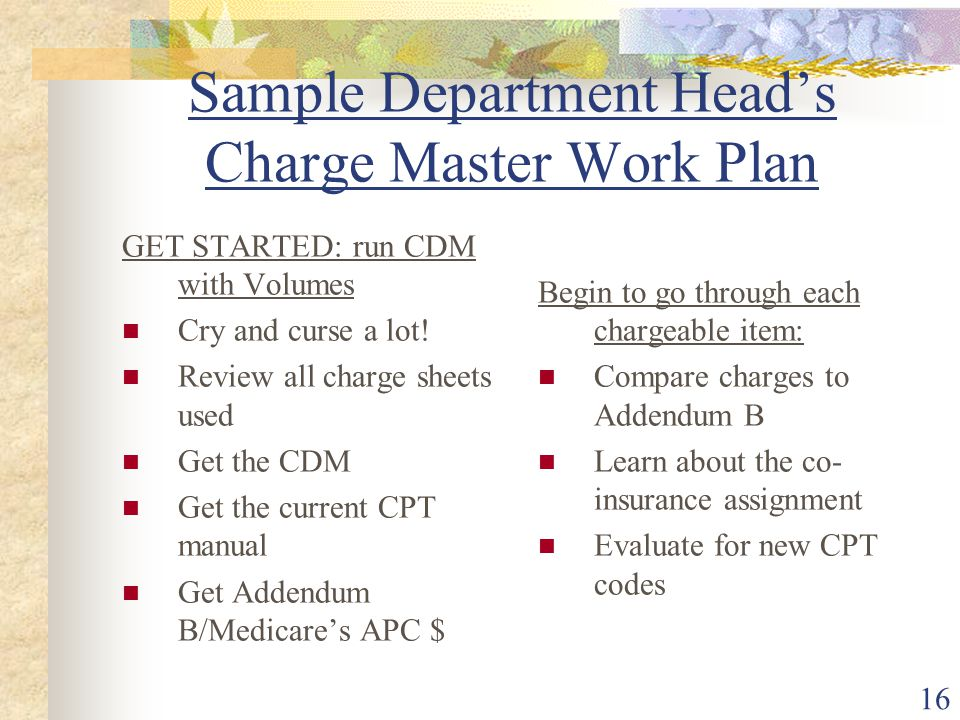 16 Sample Department Head's Charge Master Work Plan GET STARTED: run CDM with Volumes Cry and curse a lot.