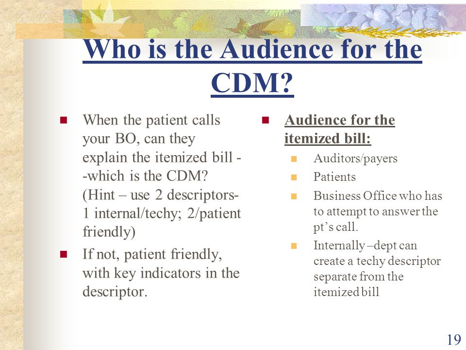 19 Who is the Audience for the CDM.