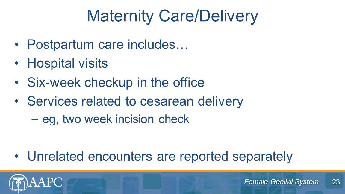 Female Genital System Postpartum care includes… Hospital visits Six-week checkup in the office Services related to cesarean delivery –eg, two week incision check Unrelated encounters are reported separately Maternity Care/Delivery 23