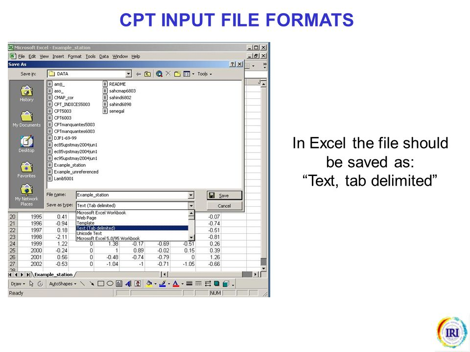 """In Excel the file should be saved as: """"Text, tab delimited"""" CPT INPUT FILE FORMATS"""