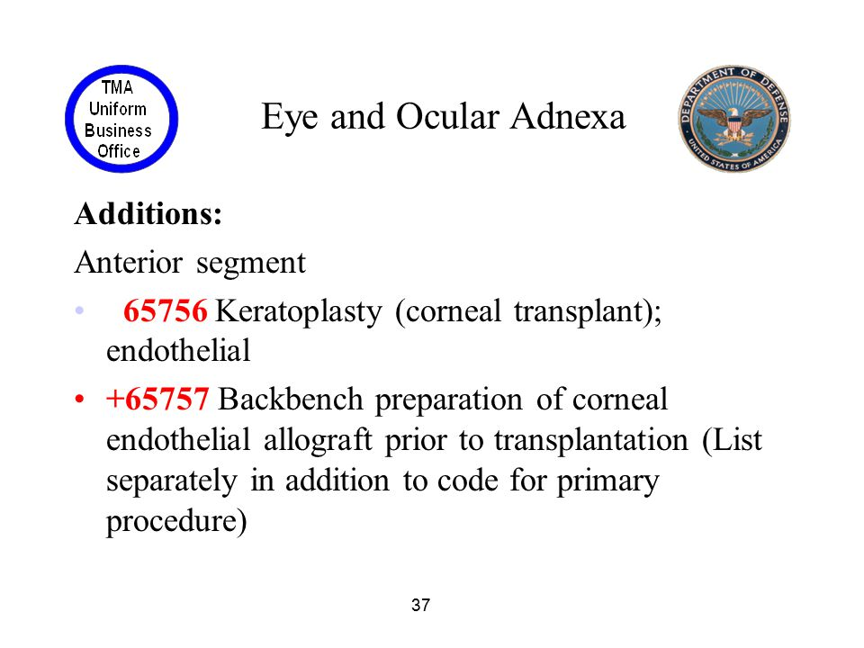 37 Eye and Ocular Adnexa Additions: Anterior segment 65756 Keratoplasty (corneal transplant); endothelial +65757 Backbench preparation of corneal endo
