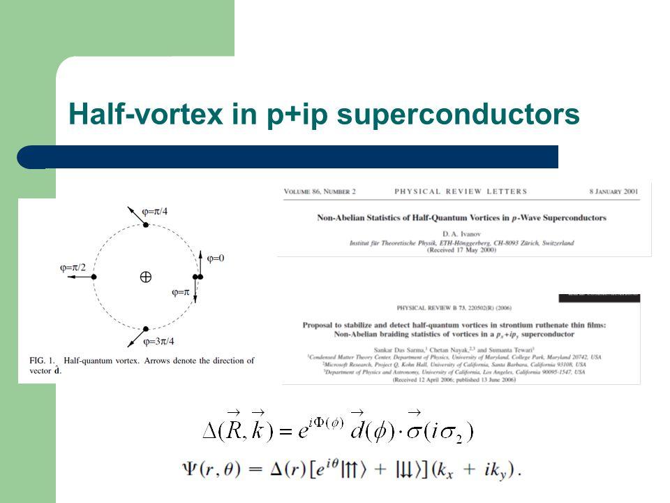 Half-vortex in p+ip superconductors