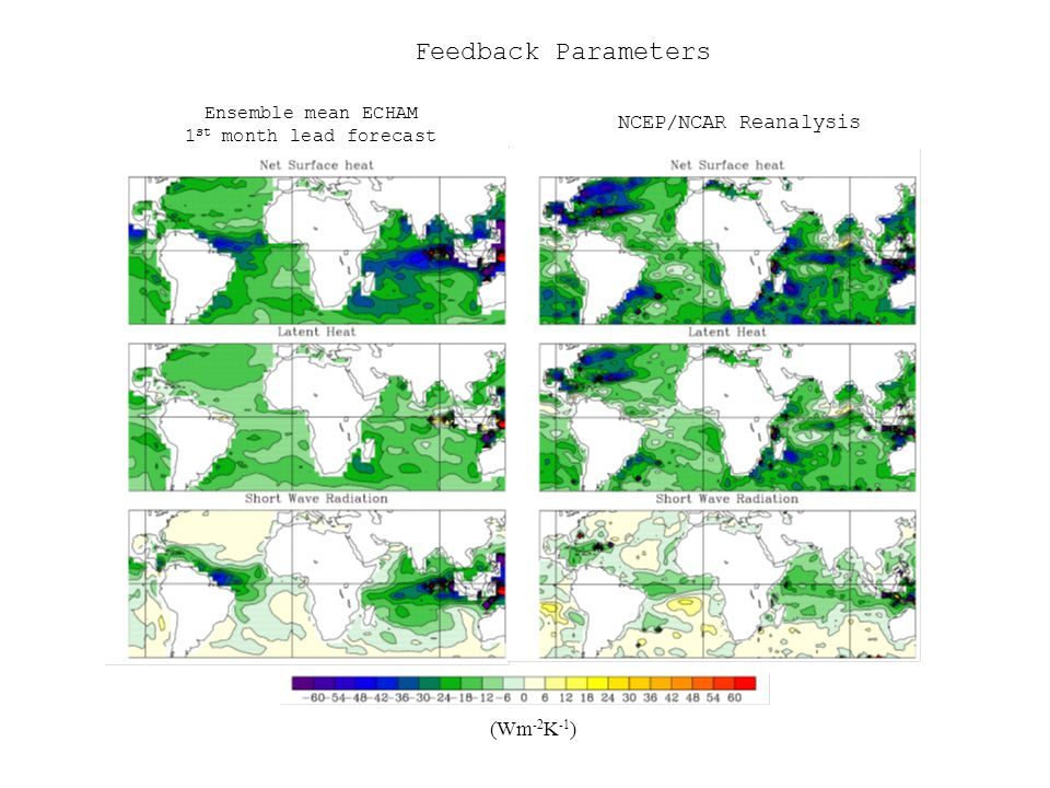 NCEP/NCAR Reanalysis Ensemble mean ECHAM 1 st month lead forecast Feedback Parameters (Wm -2 K -1 )