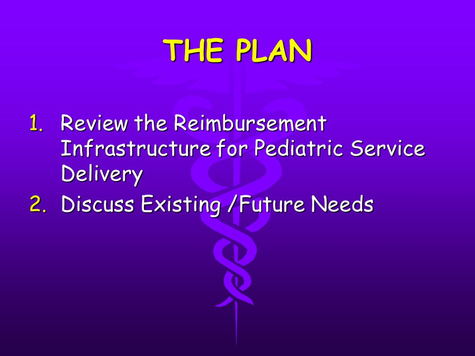 THE PLAN 1.Review the Reimbursement Infrastructure for Pediatric Service Delivery 2.Discuss Existing /Future Needs