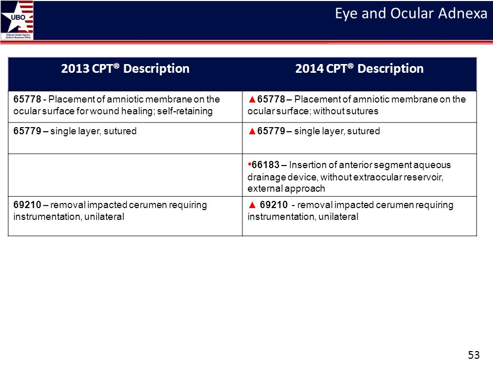 Eye and Ocular Adnexa 53 2013 CPT® Description2014 CPT® Description 65778 - Placement of amniotic membrane on the ocular surface for wound healing; se
