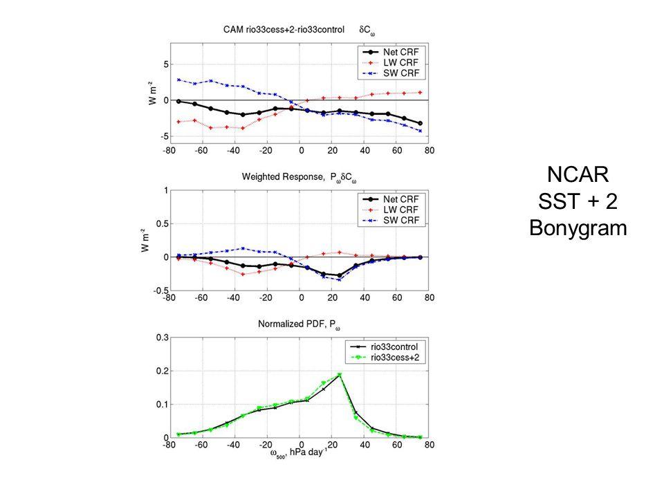 NCAR SST + 2 Bonygram
